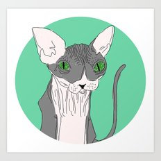 Nicolas the Sphynx Art Print