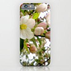 Spring Forward Slim Case iPhone 6s