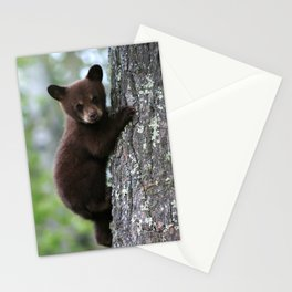 Bear Cub Climbing a Tree Stationery Cards