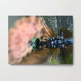 Beauty in the Details Metal Print