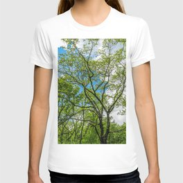 Almost cloudy blue sky over green trees T-shirt