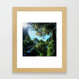 Find my way. Framed Art Print