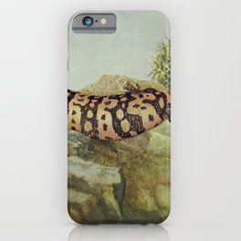 Vintage Print - Birds and Nature (1901) - Gila Monster iPhone Case
