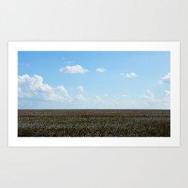 Cotton Art Print