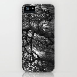 Oak Trees on the March iPhone Case