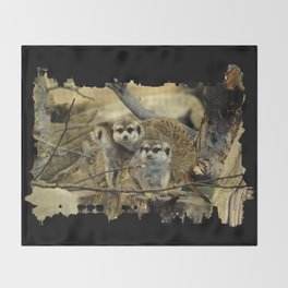 African Meerkat Trio Throw Blanket