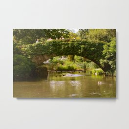 CENTRAL PARK-NYC Metal Print