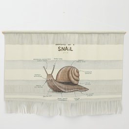 Anatomy of a Snail Wall Hanging
