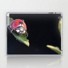 Ladybug Journey Laptop & iPad Skin