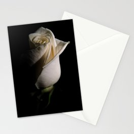 White Rose Low Key Minimal Botanical / Nature / Floral Photograph Stationery Cards