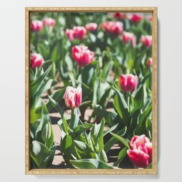Tulips 10 #floral #tulip Serving Tray
