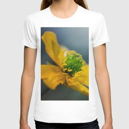 Two similar worlds T-shirt