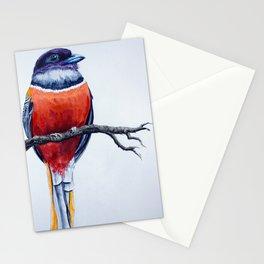 Malabar Trogon Stationery Cards