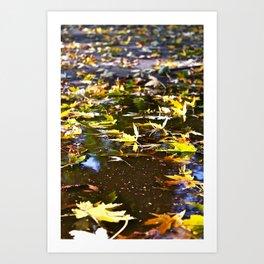 Prague: Leaves Art Print