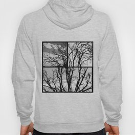 Black Tree Hoody