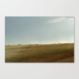 GRADATION OF THE FIELD Canvas Print
