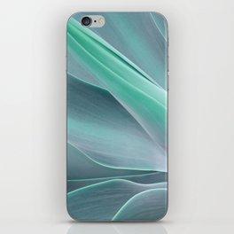 Blue Green Agave Attenuata iPhone Skin