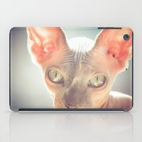 floyd iPad Cases featuring Floyd The Cat by Alex DZ