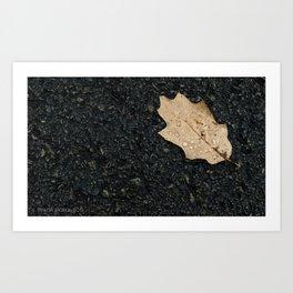 Autumn Leaf With Raindrops Art Print