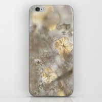 vegetable iPhone & iPod Skins featuring Sweet vegetable by Laurianne Ceneda