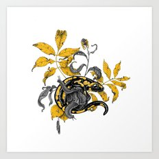 Salamander and Snails Art Print