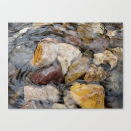 Just Under the Surface Canvas Print