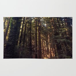 Listen to the Redwoods Rug