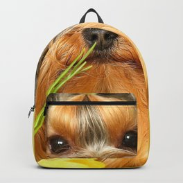 Spring Yellow Crocuses With Yorkie Puppy #decor #society6 Backpack