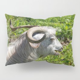 Side View of A Billy Goat Grazing Pillow Sham