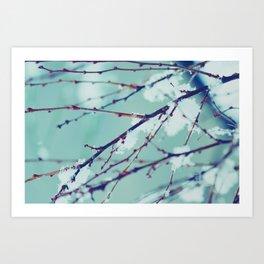 Winter of February Art Print