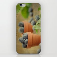 Try our delicious Blueberries iPhone & iPod Skin