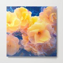 Peach Oleanders on Blue Haze Metal Print