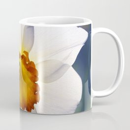 the genus of narcissus Coffee Mug