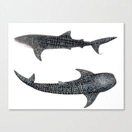 Whale sharks Canvas Print