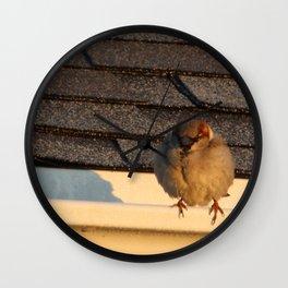 Bird in the Sun Wall Clock