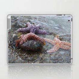 Sea Stars (starfish) chilling by Aloha Kea Photography Laptop & iPad Skin