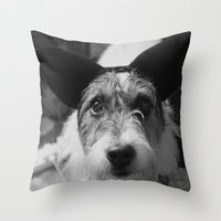 jack russell Throw Pillows featuring Jack Russell by Arianne Kenworthy Photography