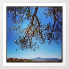 Oak Tree over Ghost Ranch, New Mexico Art Print