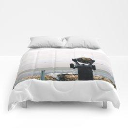 Focus  Comforters