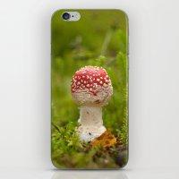 mushroom iPhone & iPod Skins featuring Mushroom by Mirella von Chrupek