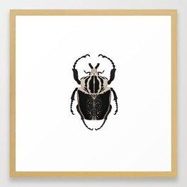 Royal Goliath Beetle Framed Art Print