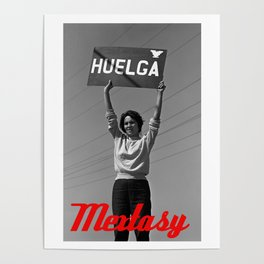 Chicana Activist Hall of Fame Poster
