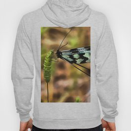 Lacewing Hoody