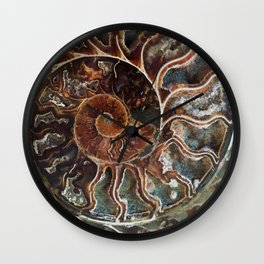 Fossilized Shell Wall Clock