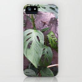 Windowleaf iPhone Case