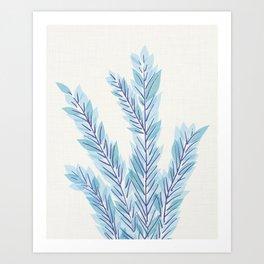 Blue Juniper Branches Botanical Art Print