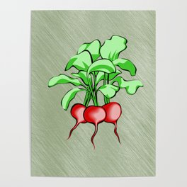 Healthy Radishes On Green Background Poster