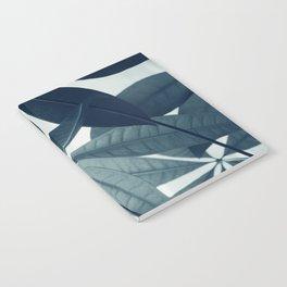Pachira Aquatica #4 #foliage #decor #art #society6 Notebook