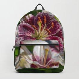 Lil Backpack