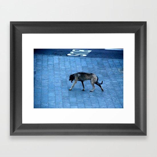 Gos Framed Art Print